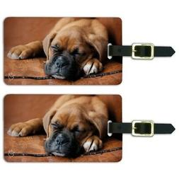 Boxer Puppy Dog Sleeping Leather Chair Luggage ID Tags Cards