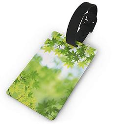 Personalized Luggage Tag Green Leaves Summer Customized Trav